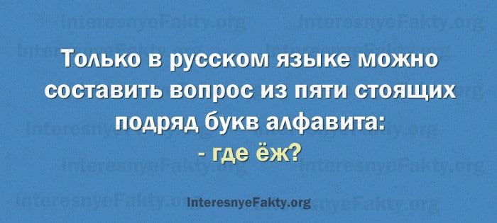 Osobennosti-russkogo-yazyika-11