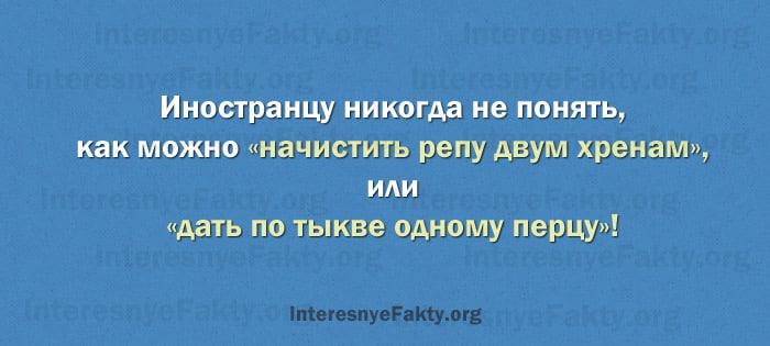 Osobennosti-russkogo-yazyika-14