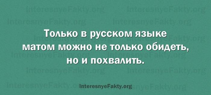 Osobennosti-russkogo-yazyika-6