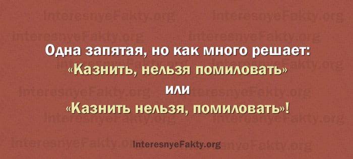 Osobennosti-russkogo-yazyika-9