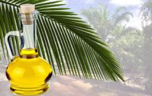 Что нужно знать про пальмовое масло