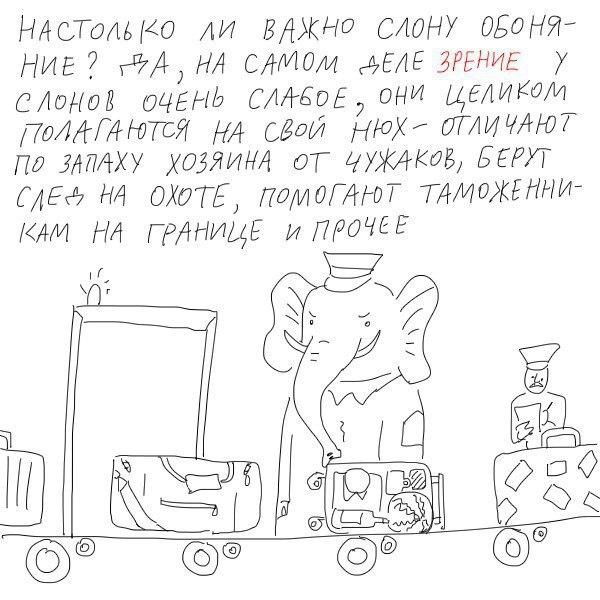 Pochemu-kolbasu-rezhut-pod-uglom-7