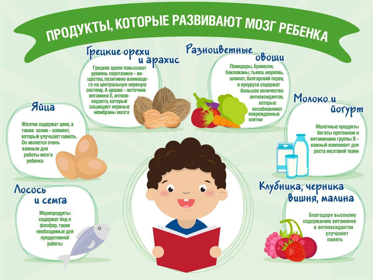 Produkty-dlya-razvitiya-mozga