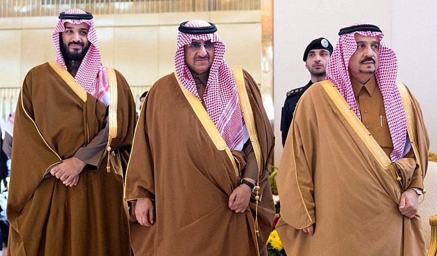 Saudity-samye-bogatye-semi