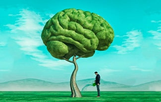 Сила мысли и развитие сознания человека