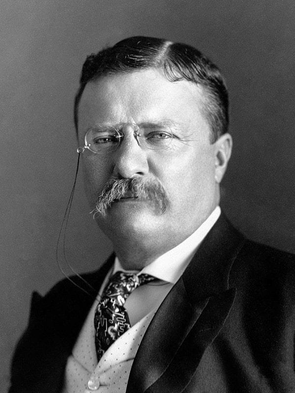 Spisok-prezidentov-SSHA-Teodor-Ruzvelt