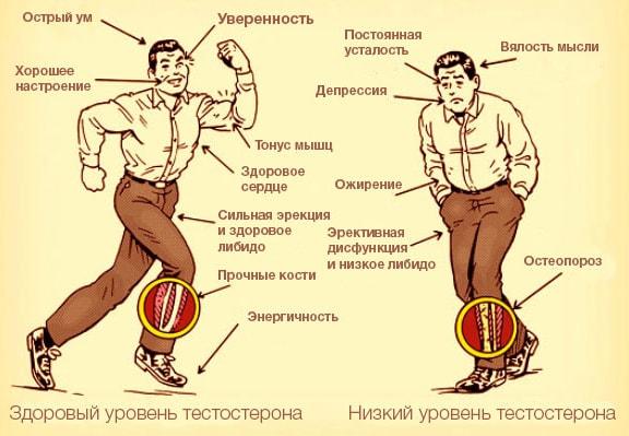 Sposobyi-povyisit-testosteron