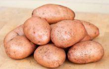 ТОП-10 стран по потреблению картофеля