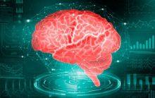 10 главных загадок человеческого мозга