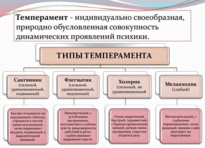 Tipyi-temperamenta-i-ih-svoystva