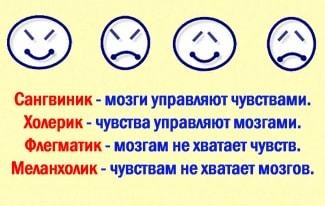 Темперамент человека и его особенности