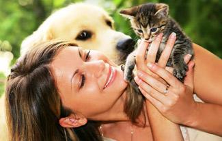 Топ 5 животных, которые лечат