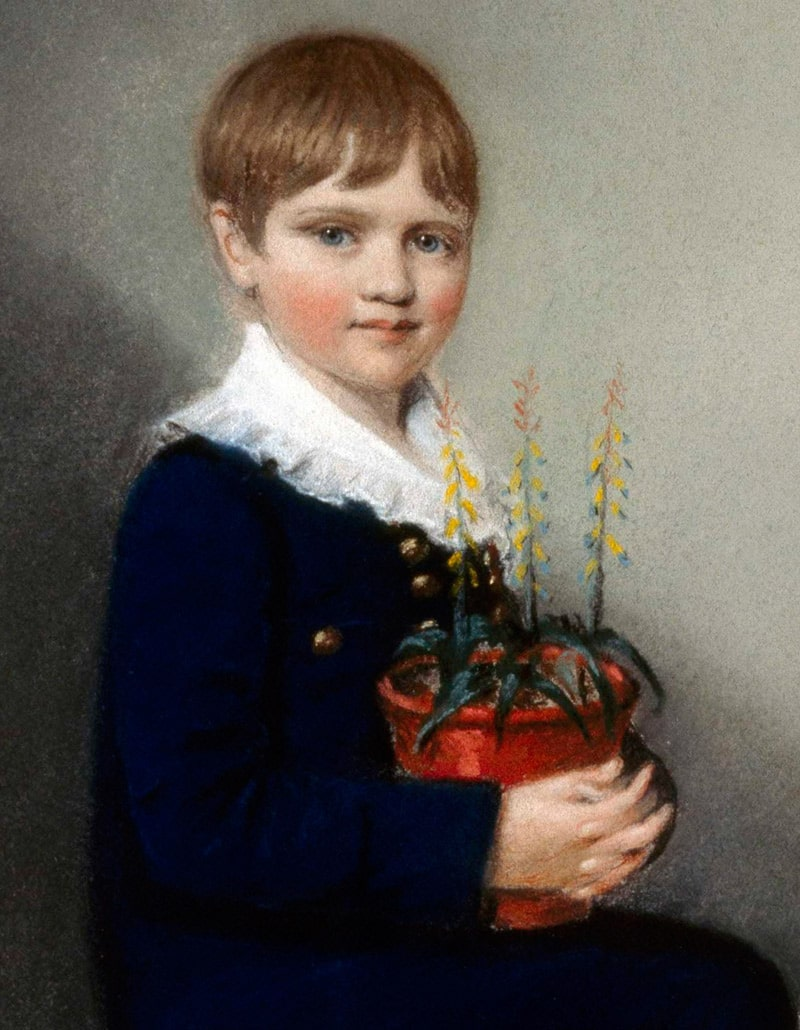 charlz-darvin-v-detstve