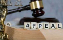 Что такое апелляция