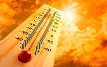 20 самых интересных фактов о глобальном потеплении