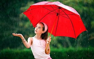 18 интересных фактов о дожде