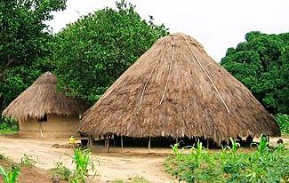 25 интересных фактов о Гвинее