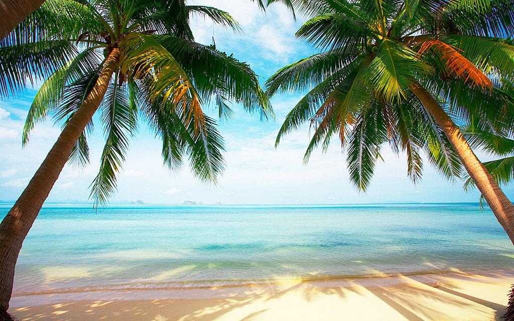 interesnye-fakty-o-karibskom-more