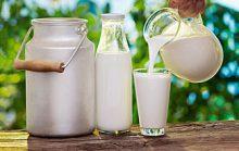 15 интересных фактов о молоке