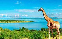 12 интересных фактов о реках Африки