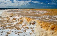 Интересные факты о Желтом море