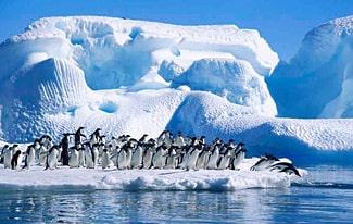 20 интересных фактов об Антарктике
