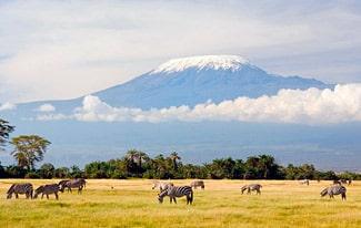 12 интересных фактов о Килиманджаро