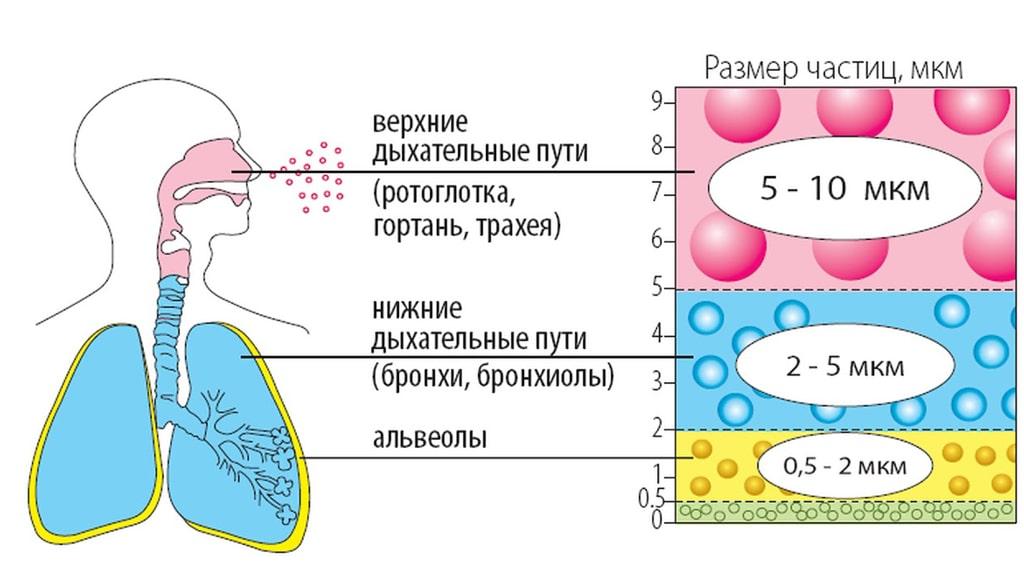 kak-dejstvuet-nebulajzer