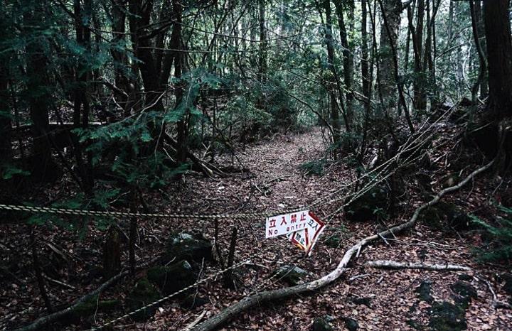 les-samoubijcz