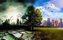 17 невероятных фактов об экологии