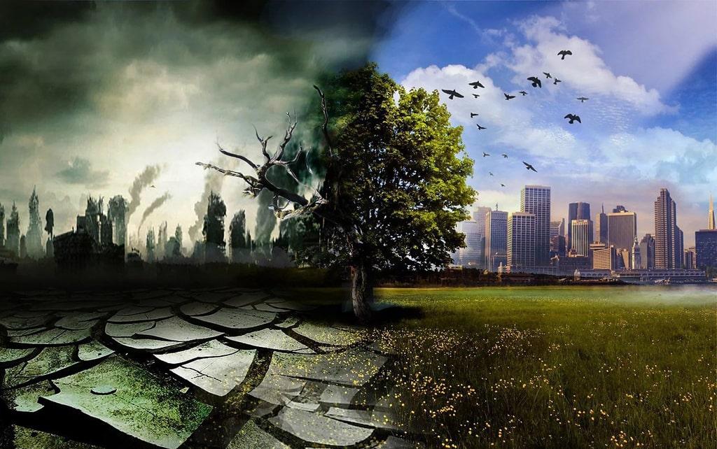 neveroyatnye-fakty-ob-ekologii