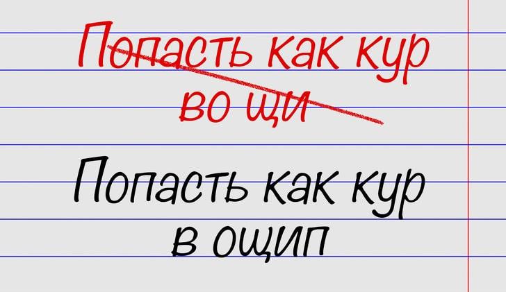 oshibayutsya-znatoki-russkogo-yazyka-13