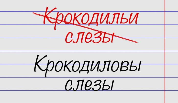 oshibayutsya-znatoki-russkogo-yazyka-14