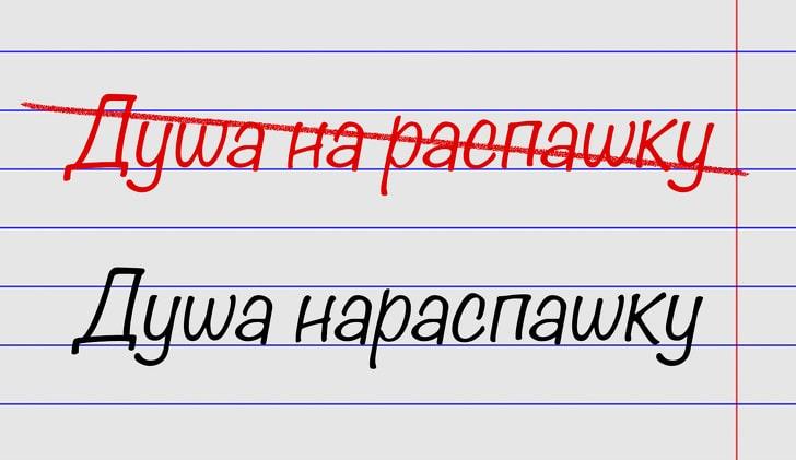 oshibayutsya-znatoki-russkogo-yazyka-2
