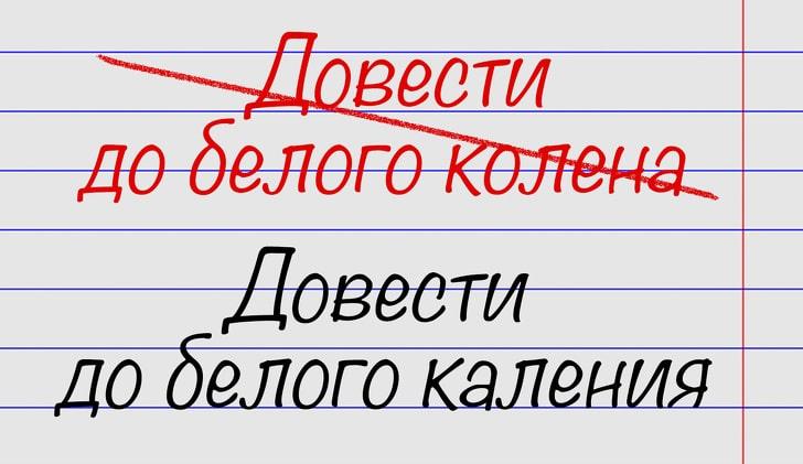 oshibayutsya-znatoki-russkogo-yazyka-5