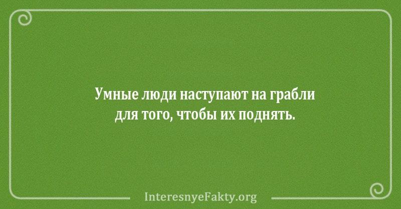 shutki-ot-kotoryh-kazheshsya-umnee-11