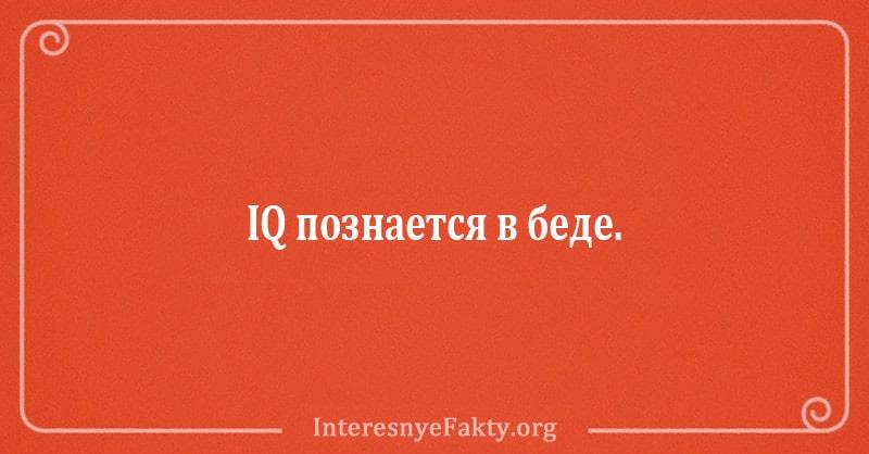 shutki-ot-kotoryh-kazheshsya-umnee-13