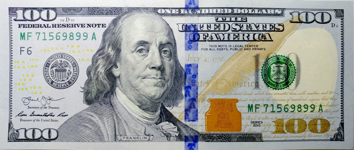 sto-dollarov-ssha-serii-2013-goda