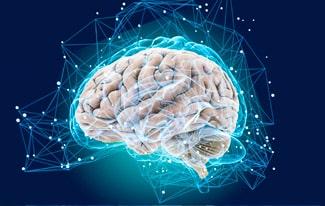 Повышение работоспособности мозга
