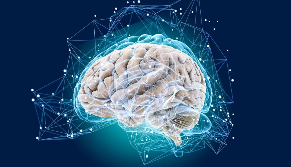 tehnika-razvitiya-mozga