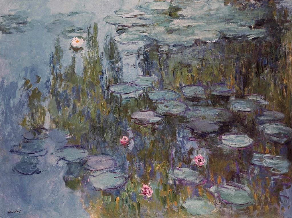 vodyanye-lilii