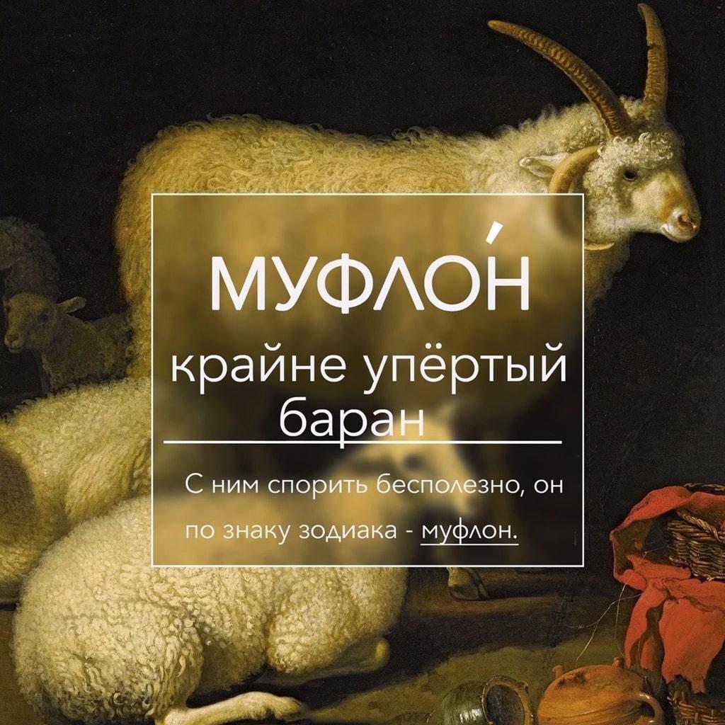 zabytye-slova-dlya-slovarnogo-zapasa-8