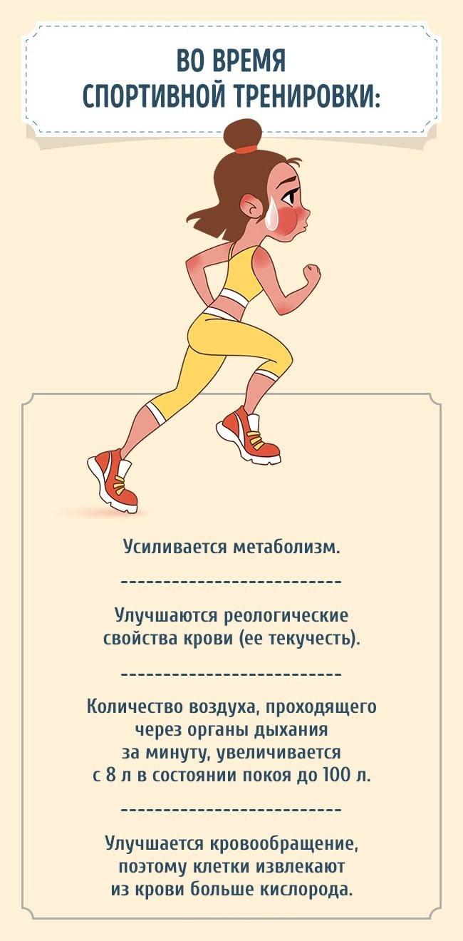 zanimatsya-sportom-30-minut-v-den-1