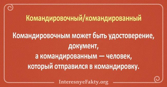 10-par-slov-znacheniya-kotoryih-putayut-5