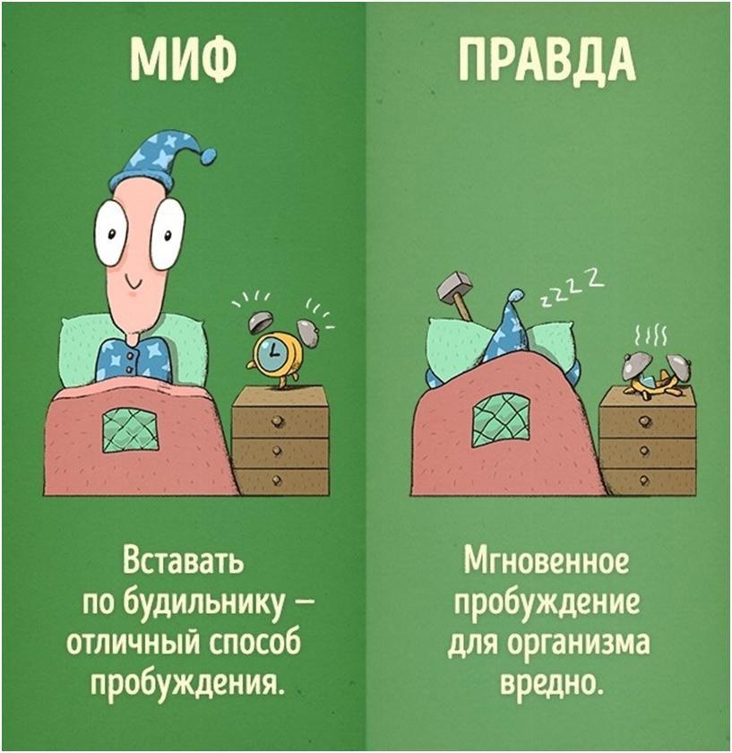 6-mifov-o-kotoryih-vyi-mogli-ne-znat-3