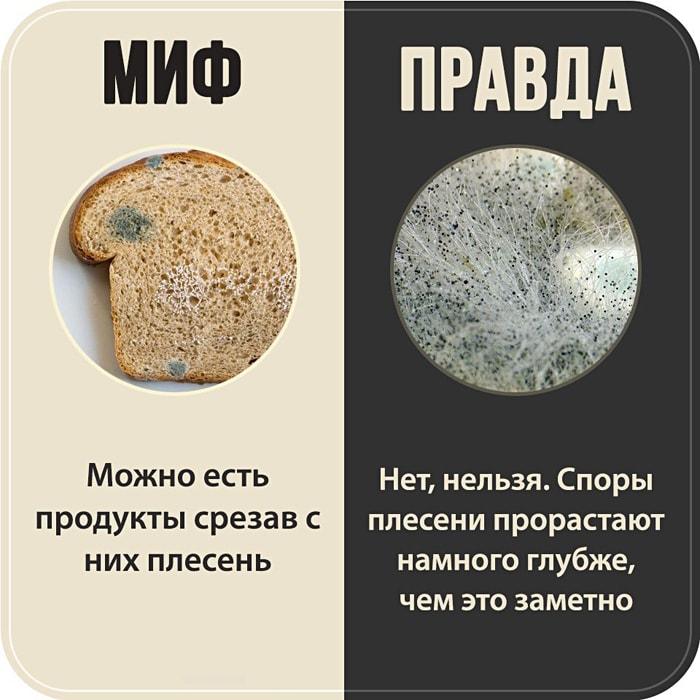 7-populyarnyih-mifov-1