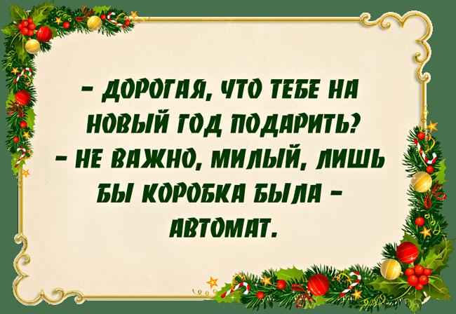 Anekdotyi-pro-Novyiy-god-1