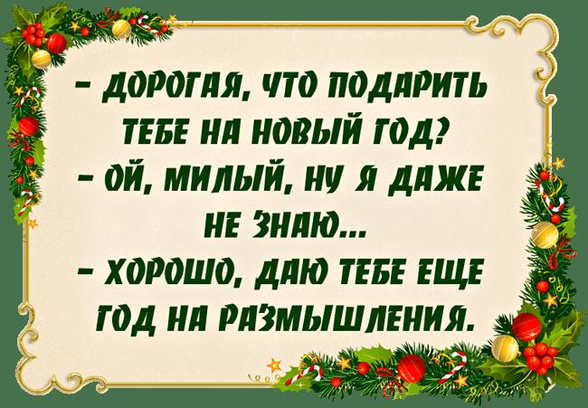 Anekdotyi-pro-Novyiy-god-3
