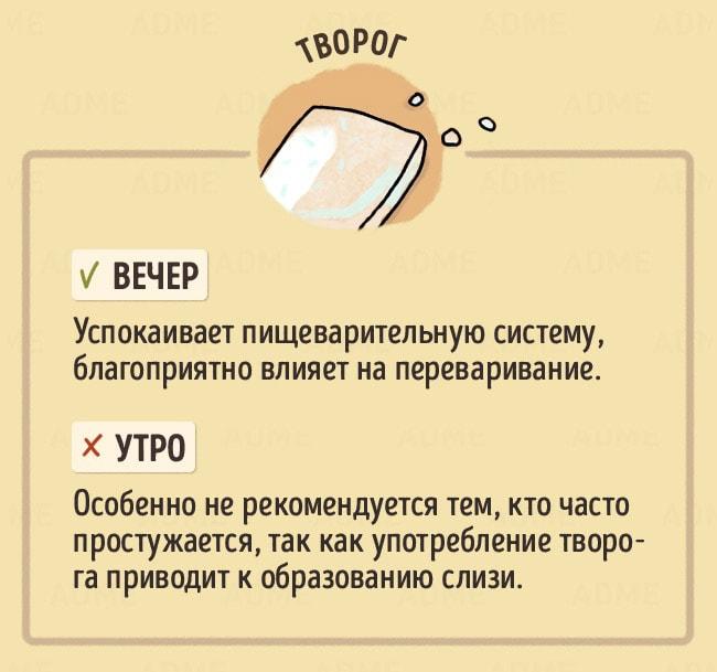 CHto-est-v-raznoe-vremya-dnya-11