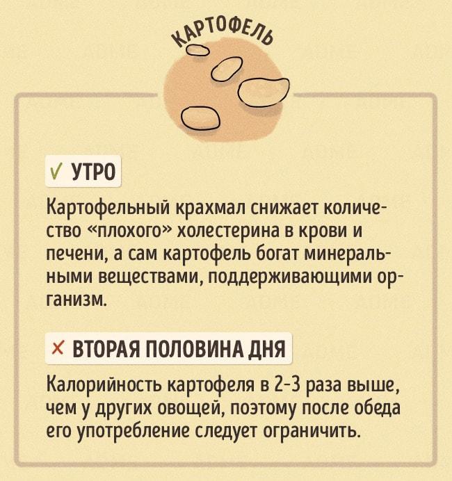 CHto-est-v-raznoe-vremya-dnya-9